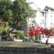 今昔奈良名所「猿沢池と猿塚」