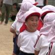 幼稚園のビデオ撮影事情