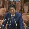 日本政府のパラドックス