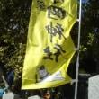 1月恵方三社詣り-1