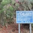 1 鷹ノ巣山(922m:東広島市・高田郡向原町)登山   単独登山になって