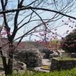 万博公園 (7)