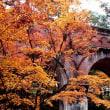 京都旅行2017.11.26