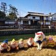 岡山県 美観地区 白雪姫セット