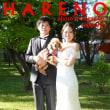 9/24  札幌ロケーション撮影 ロケ代無料♪ フォトスタジオ・ハレノヒ