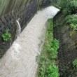 雨降って川が増水することの意味を知った( ´~`)