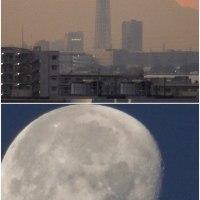 1年前の今日も良い天気で東京スカイツリーと月が綺麗に見えていました。