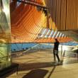 世界遺産:オペラハウスツアー