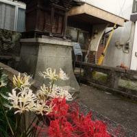 秋空に佐敷城跡と祇園さん