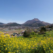 私の好きな場所・・・大分県道・熊本県道11号別府一の宮線