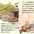 松山三越 期間限定販売 & 横浜タカシマヤ 期間限定販売 DMハガキデザイン