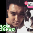 韓国アイドルの犬にかまれ死亡 敗血症とは