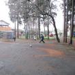 公園と室内