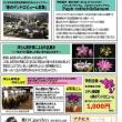 イベント情報 ~『洋らん展 in 会津若松2018 ワールドオーキッドフェスティバル』~
