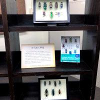 2月10日で見納め、九州大学箱崎キャンパス閉校企画「ありがとう箱崎」を堪能