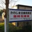 埼玉県川島町の白鳥 2017年12月9日