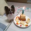 お誕生日のお祝い