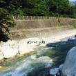 西丹沢渓流釣場で自然を満喫!