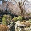 仙台滞在記 2018早春  『 中島丁公園 』