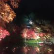 2017年 紅葉の京都