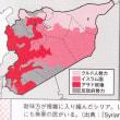 地政学(ロシア・シリアでの軍事介入)