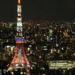 虎ノ門ヒルズ47階から見た夜景1