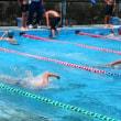 郡水泳大会が開催されました