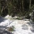 昨日の登山道