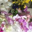 乾燥花作り