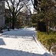 2018年現在の、東京の歴代降雪記録(リスト改訂版)