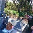 祖父の七回忌 お墓建立