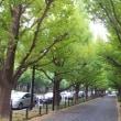 ロイヤルガーデンカフェ青山(^◇^)