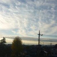 今日の朝は氷点下…夜はみぞれ?雪? (;´ω`;)サムィィィィ