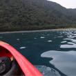本栖湖でカヌーというか