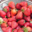 イチゴの季節・・・イチゴジャムを作る