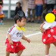 子供の運動会♪