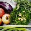 【大暑】 ~ 熱中症に気をつけましょう 夏野菜もたくさん摂り入れて ~