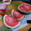 庭に植えた西瓜の試食(4回目(最終回))