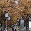 中之島緑道(淀屋橋北詰~肥後橋北詰)の彫刻 2 (大阪市北区)