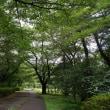 武蔵野公園 その3