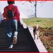 思い出の階段♪