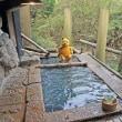 プーさん 熊本県阿蘇郡南小国町 奥満願寺温泉 旅館藤もとに行ったんだよおおう その7