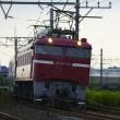 昨日のEF81-139 カシオペア回送列車。