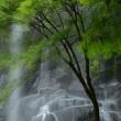 3535 滝風舞う