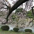 江戸東京博物館と新宿御苑