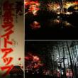 『今夕から』 紅葉ライトアップ