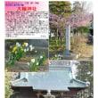 埼玉-764 大輪神社