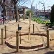 第7回ゆめづくりまちづくり賞「奨励賞」受賞記念植樹