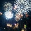 大阪堺市・ハーベストの丘 花火大会