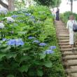 性海寺公園の古墳